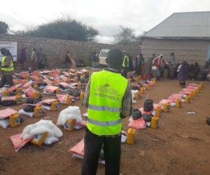 Emergency Food & Non Food Item to Baidoa IDPs